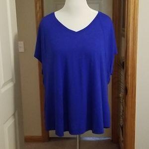 Blue short sleeve shirt NWOT